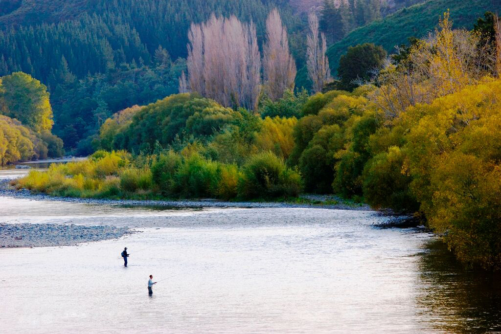 Autumn Fly Fishing New Zealand