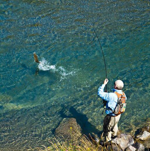 Summer Fly Fishing New Zealand