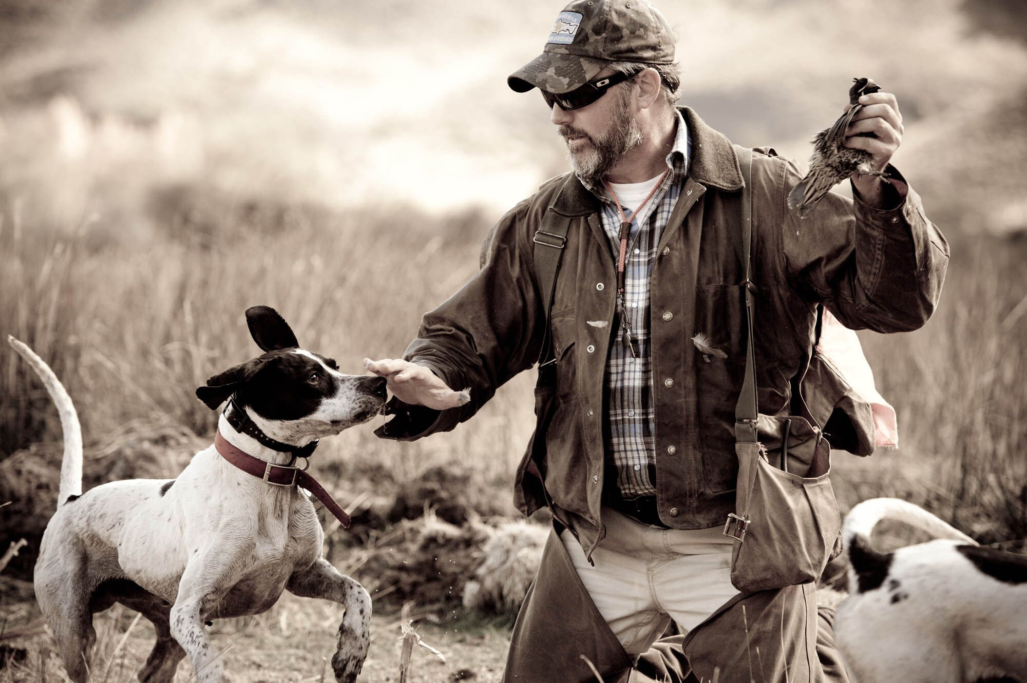 Quail Hunting Trevelin Argentina