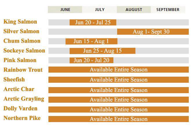Aniak River Lodge Seasons