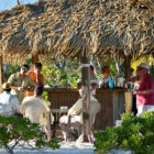 Andros-South-Lodge-Meals