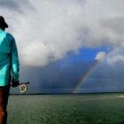 South Andros Rainbow