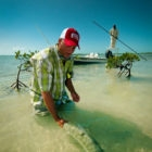 Affordable Bonefish Lodge Bahamas