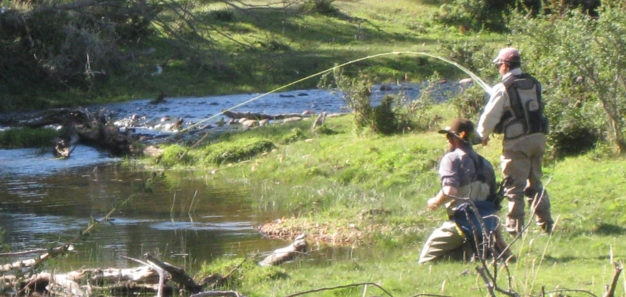 Argentina ly Fishing Guide