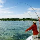 Bonefish Double