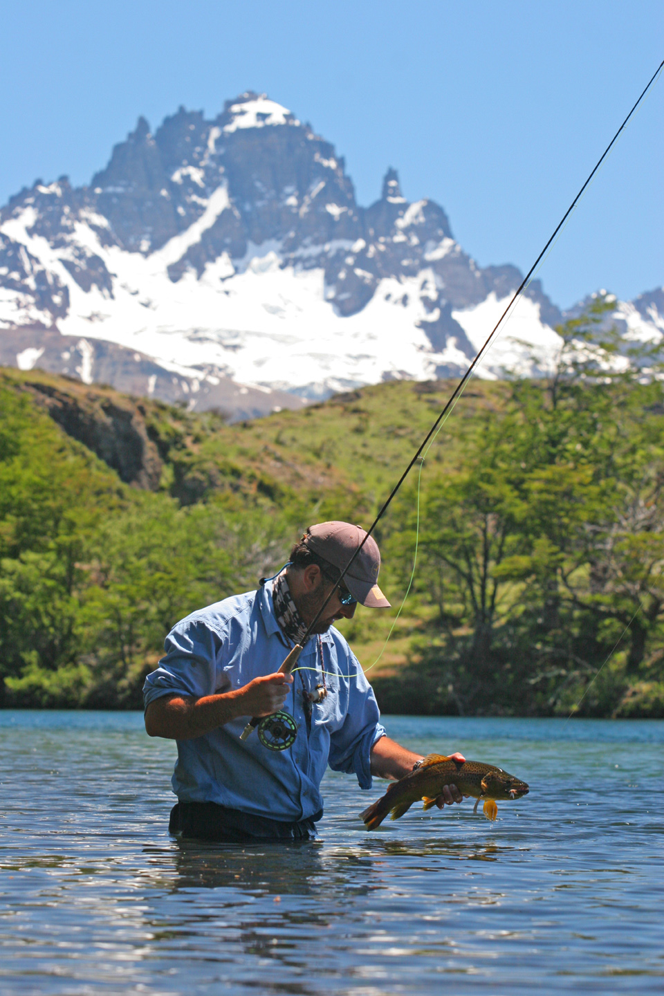 Chile Fly Fishing Trout