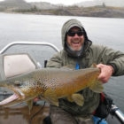 Cinco Rios Big Brown Trout