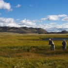 Cinco Rios Spring Creek Chile Patagonia FLy Fishing