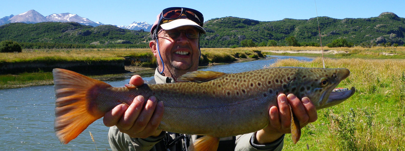 Dry fly brown trout Patagonia