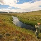 Spring Creeks Patagonia