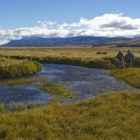 Spring creeks for fly fishing chile patagonia
