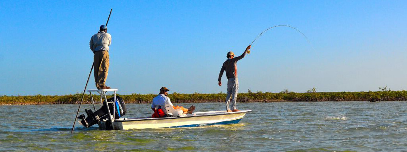 bonefish for beginners in the bahamas