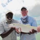 South Andros Large Bonefish
