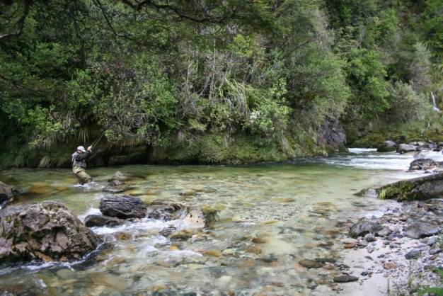 Dry Fly Fishing New Zealand