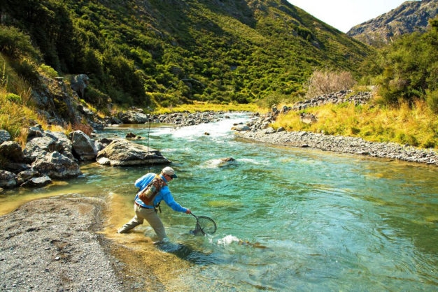 Fly Fishing in New Zealand for Brown Trout