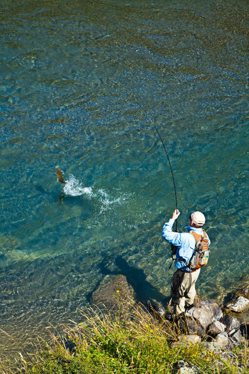 NZ Flyfishing