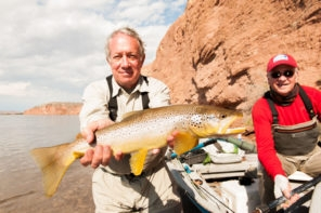 Argentina Migratory Brown Trout