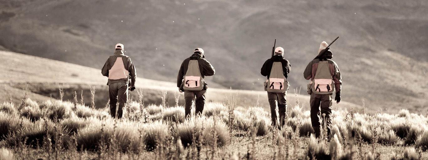 Argentina Quail Hunting