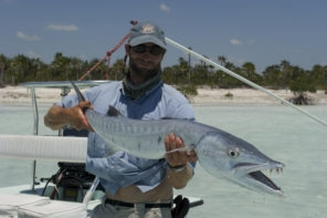 Barracuda on the fly rod