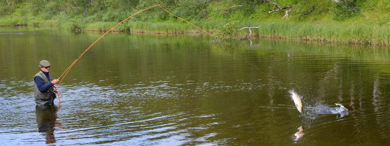 Belousiha Salmon Jump 1