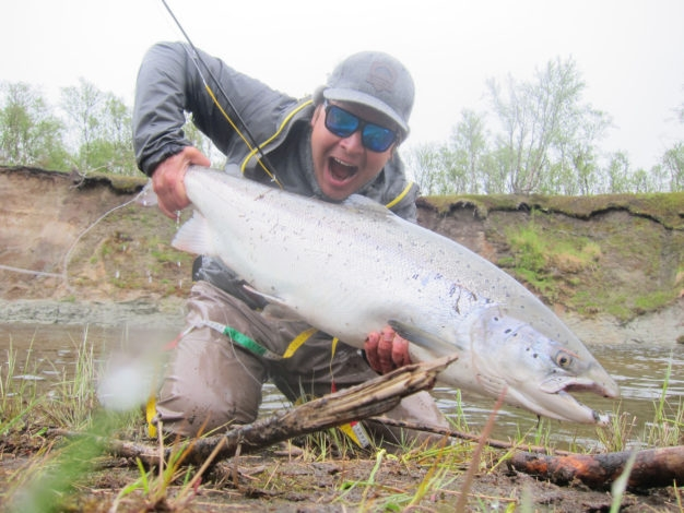 Big Kola Atlantic Salmon