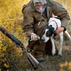 Bird Hunting destinations in Argentina