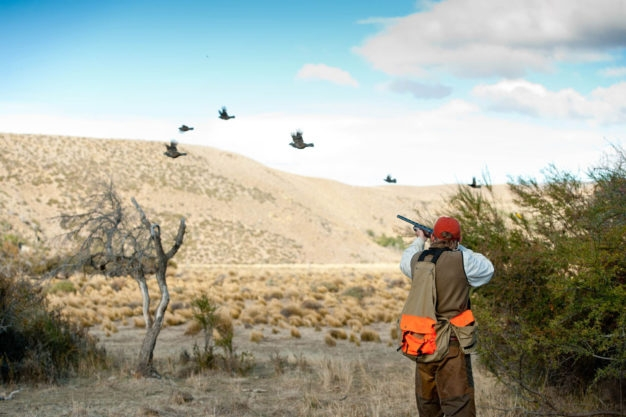 Bird Hunting in Argentine Patagonia