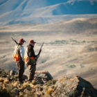 Bird hunting Chubut Province