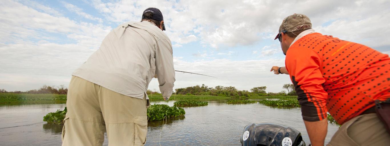 Dorado Fishing Argentina