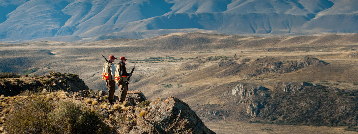 Fly fishing quail hunting argentina