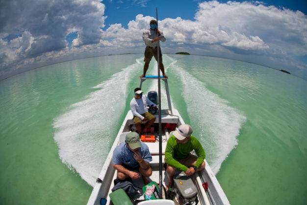 Mexico Permit Fishing Destination