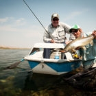 Patagonia River Guides Unplugged
