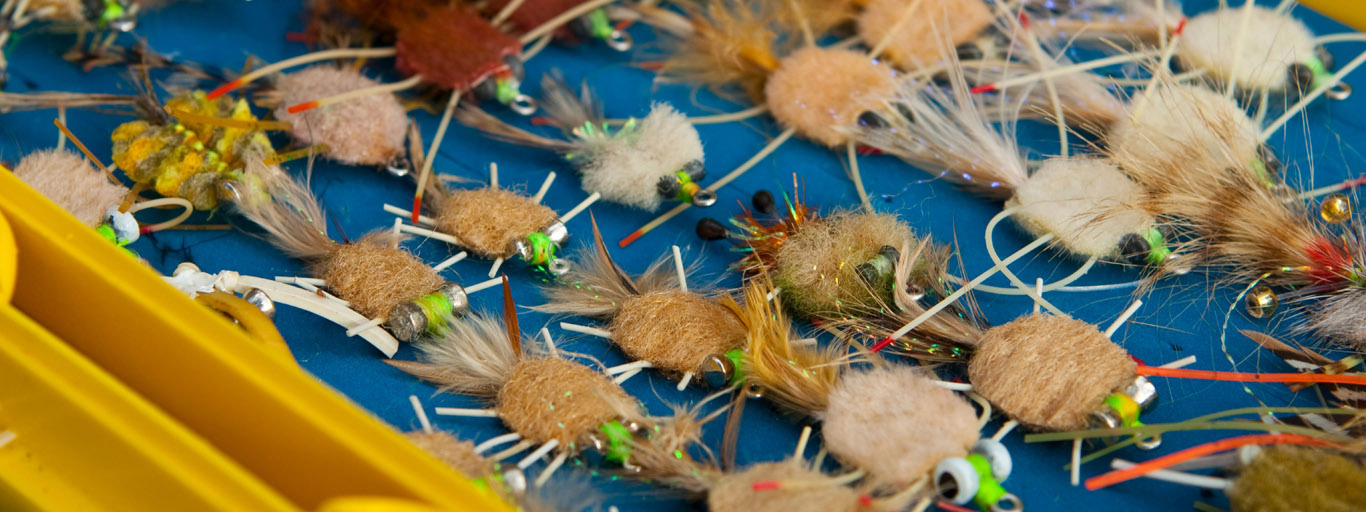 Permit Flies for Mexico