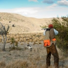 Quail Hunting in Argentine Patagonia with PRG
