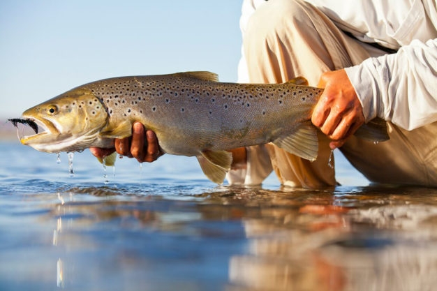 Rio Limay Float trip fly fishing