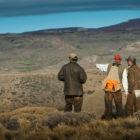 Trevelin Hunting
