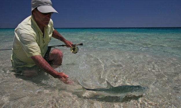 Baja Flyfishing release