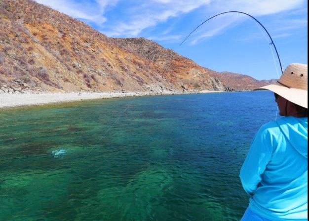 Baja Mexico Fly Fishing
