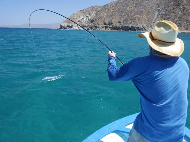 Catching roosterfish in Mexico