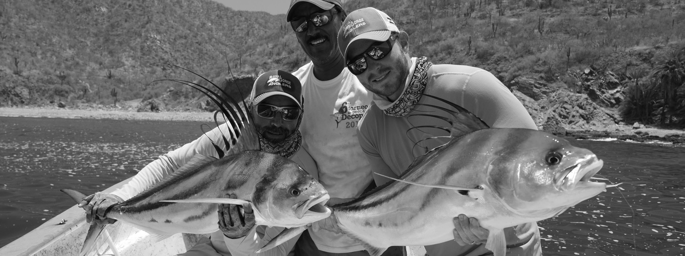 Roosterfish double mexico baja flyrod guide lodge