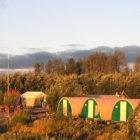 Aniak Upstream Tent Camp