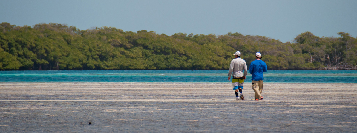 Los Roques flats fly fishing