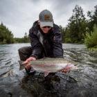 Iliamna rainbow trout