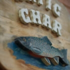 Arctic Char artwork