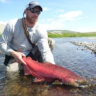 King salmon in Alaska