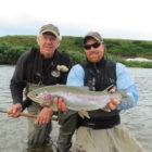 Alaska fly in rainbow trout