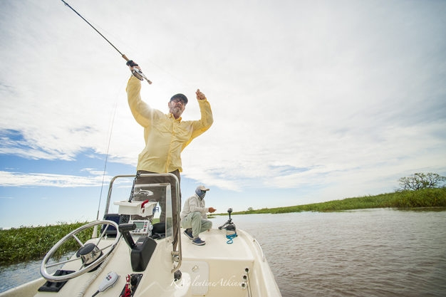 Parana river fly fishing