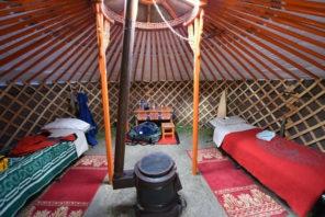luxury taimen camp fly fishing mongolia