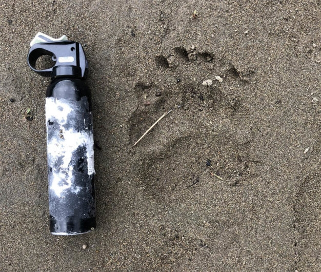 bear spray rental alaska