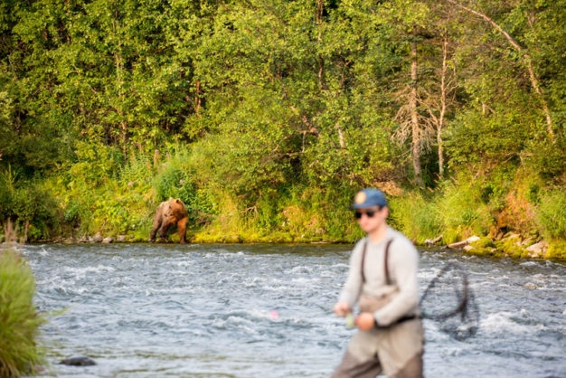 bears and fly fishing in Alaska